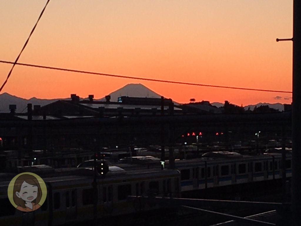 【子連れ遊び場】電車でGO!跨線橋で電車を見よう!@三鷹