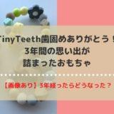 【画像あり】TinyTeeth歯固めありがとう!3年間の思い出たくさんのおもちゃ